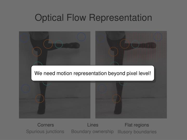We need motion representation beyond pixel level!