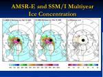 amsr e and ssm i multiyear ice concentration