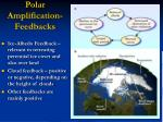 polar amplification feedbacks