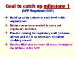 goal to catch up milestone 1 npp regulator oap