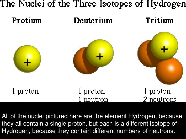 All of the nuclei pictured here are the element Hydrogen, because they all contain a single proton, but each is a different isotope of Hydrogen, because they contain different numbers of neutrons.