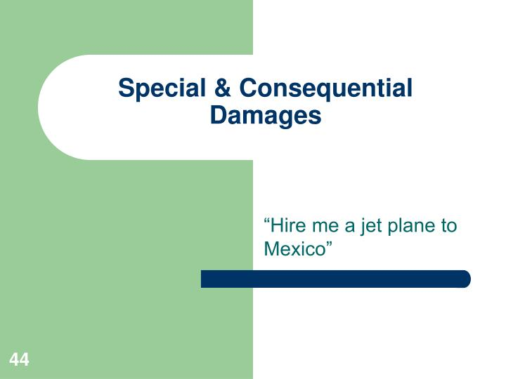 Special & Consequential Damages