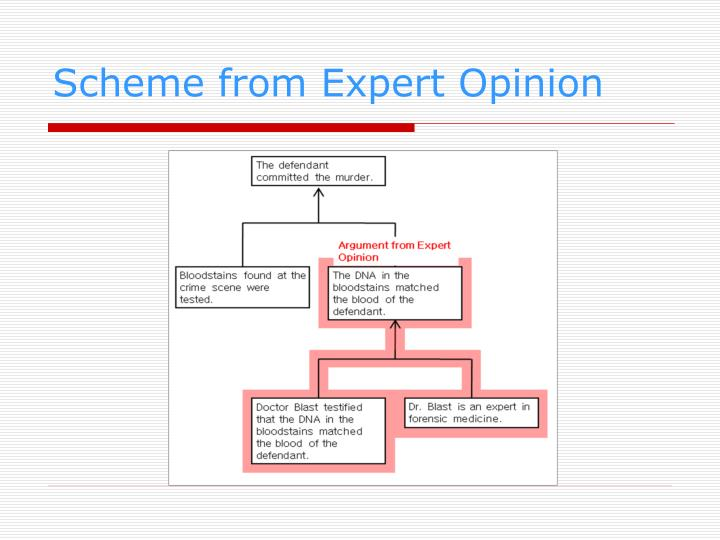 Scheme from Expert Opinion