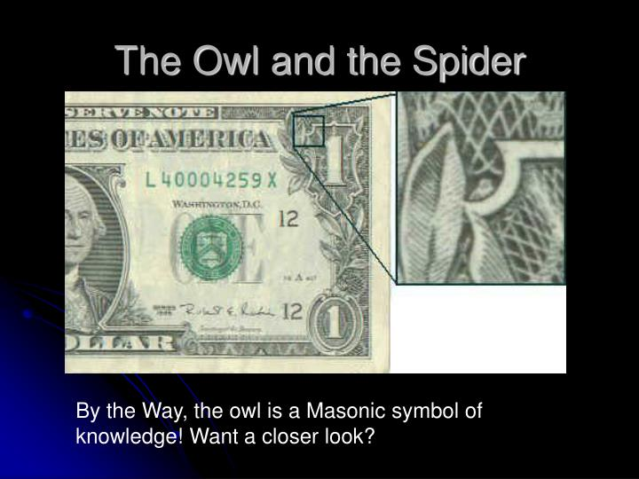 The Owl and the Spider