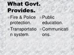 what govt provides