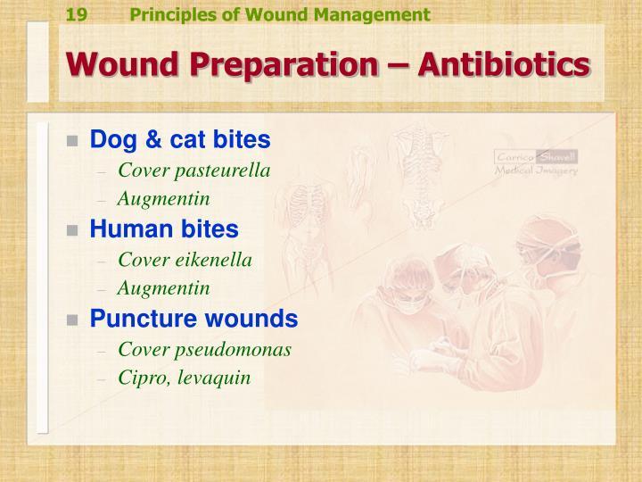 Wound Preparation – Antibiotics
