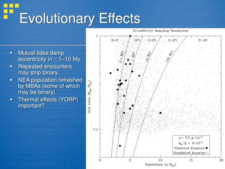 Evolutionary Effects