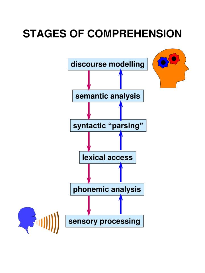Stages of comprehension