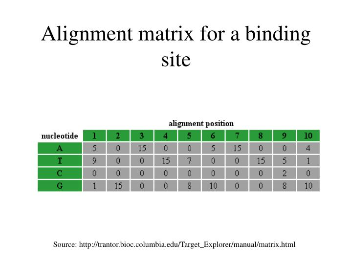 Alignment matrix for a binding site