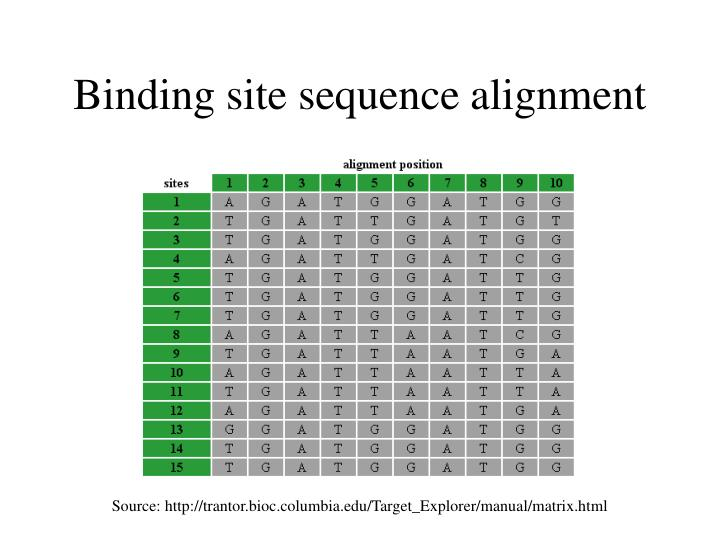 Binding site sequence alignment