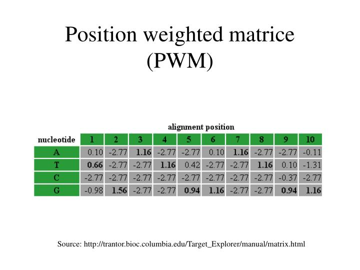 Position weighted matrice (PWM)