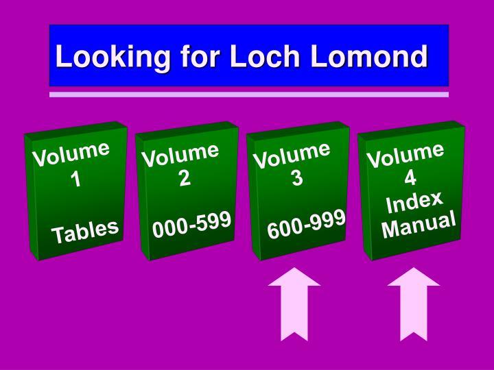 Looking for Loch Lomond
