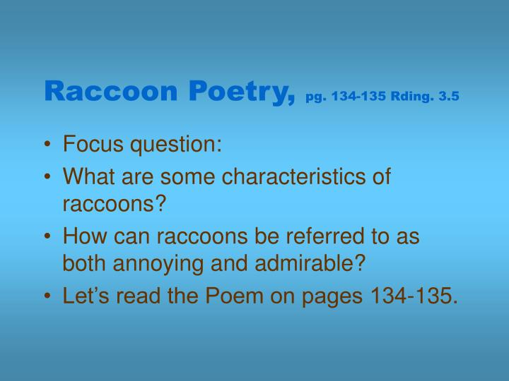 Raccoon Poetry,