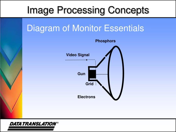 Diagram of Monitor Essentials