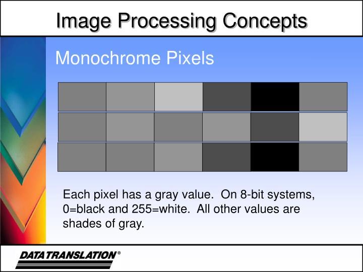 Monochrome Pixels