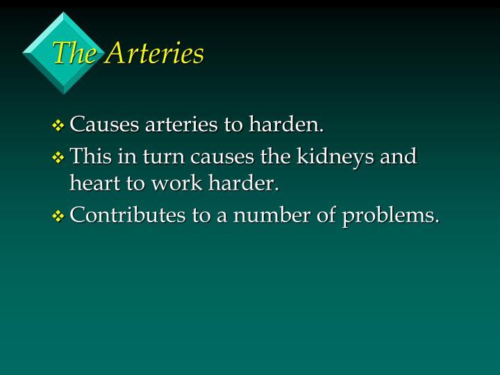 The Arteries