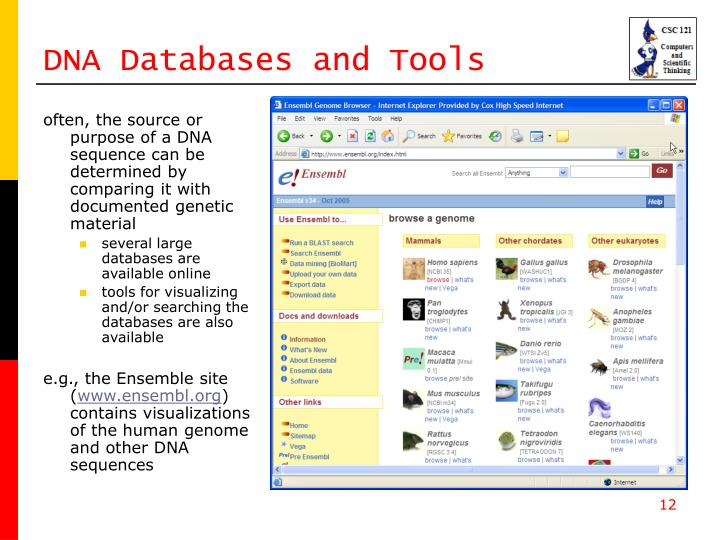 DNA Databases and Tools