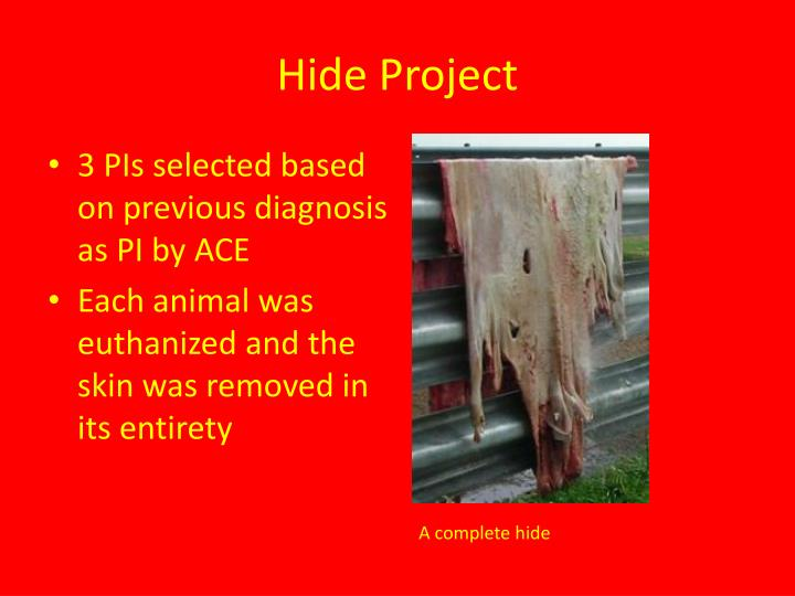 Hide Project