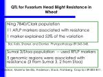 qtl for fusarium head blight resistance in wheat