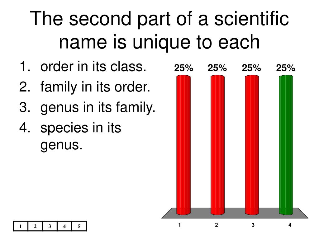 PPT - Biologists use a classification system to group