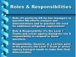 roles responsibilities1