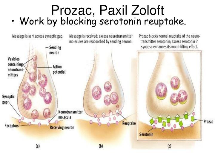 Prozac, Paxil Zoloft