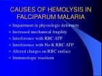 causes of hemolysis in falciparum malaria