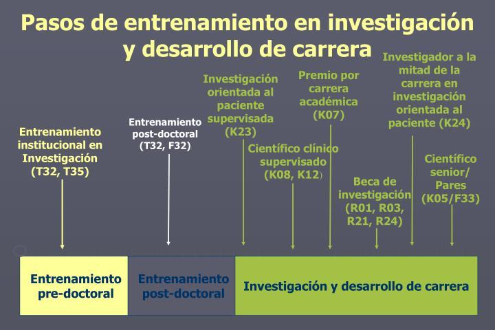 Pasos de entrenamiento en investigación y desarrollo de carrera