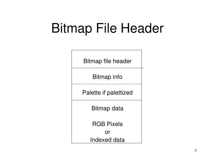 Bitmap file header