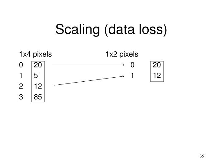 Scaling (data loss)