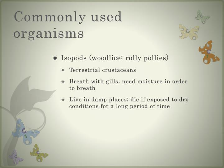 Commonly used organisms