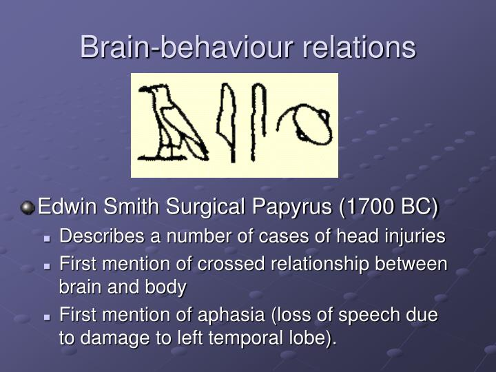 Brain-behaviour relations