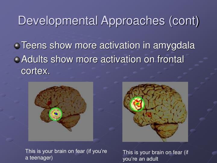 Developmental Approaches (cont)