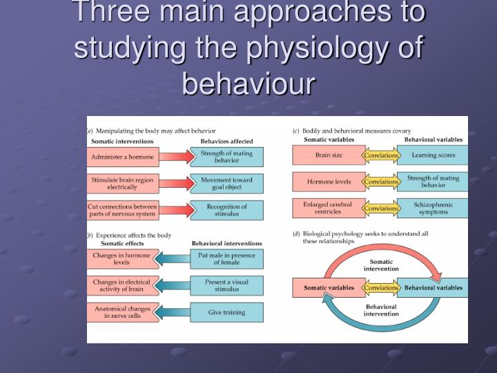 Three main approaches to studying the physiology of behaviour