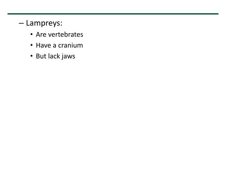 Lampreys: