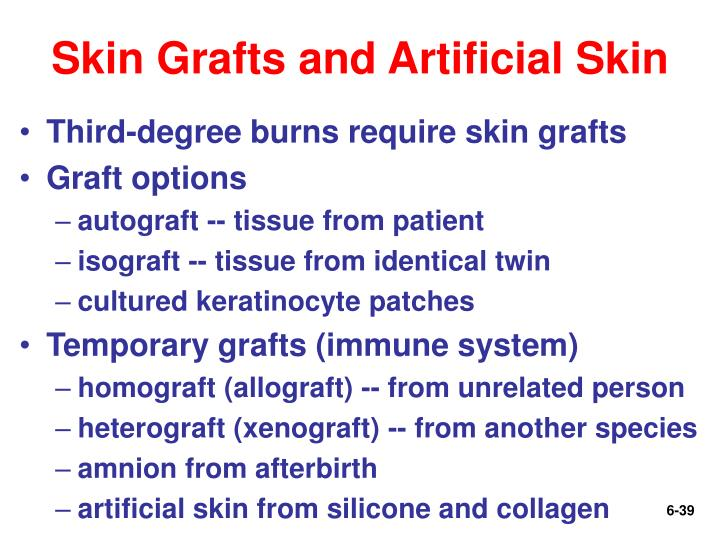 Skin Grafts and Artificial Skin