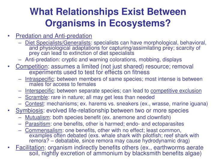 What Relationships Exist Between Organisms in Ecosystems?