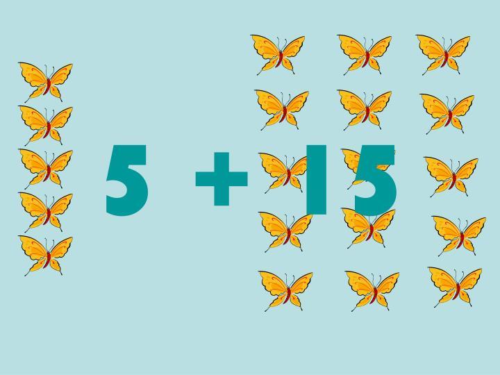 5 + 15
