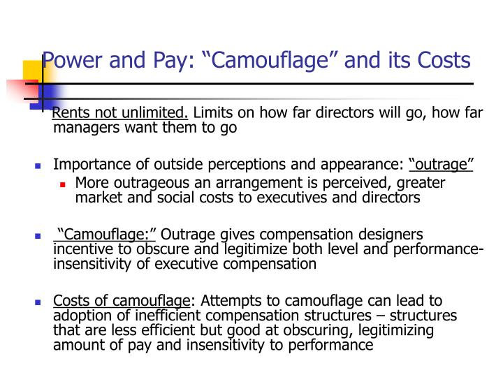 """Power and Pay: """"Camouflage"""" and its Costs"""