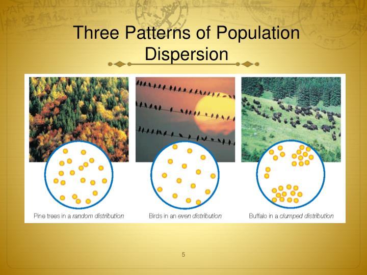 Three Patterns of Population Dispersion