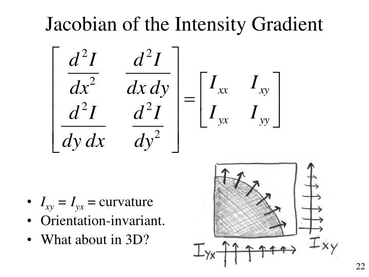Jacobian of the Intensity Gradient