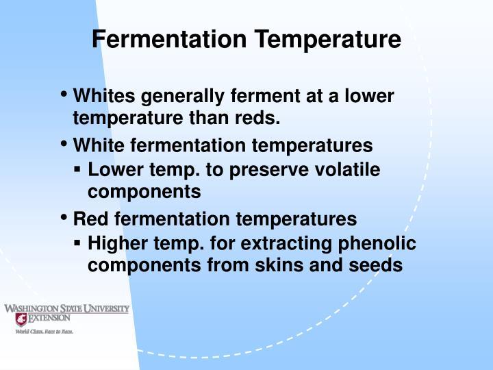 Fermentation Temperature