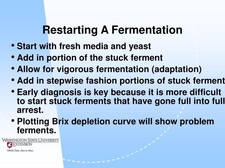 Restarting A Fermentation