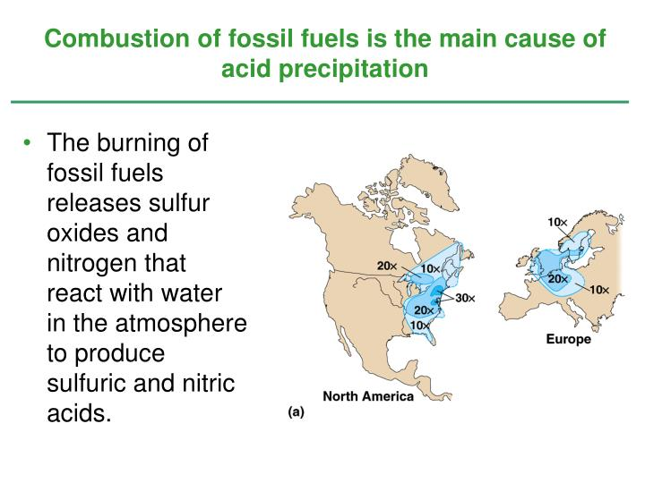 Combustion of fossil fuels is the main cause of acid precipitation