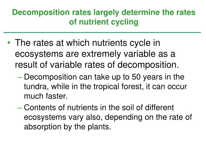 Decomposition rates largely determine the rates of nutrient cycling