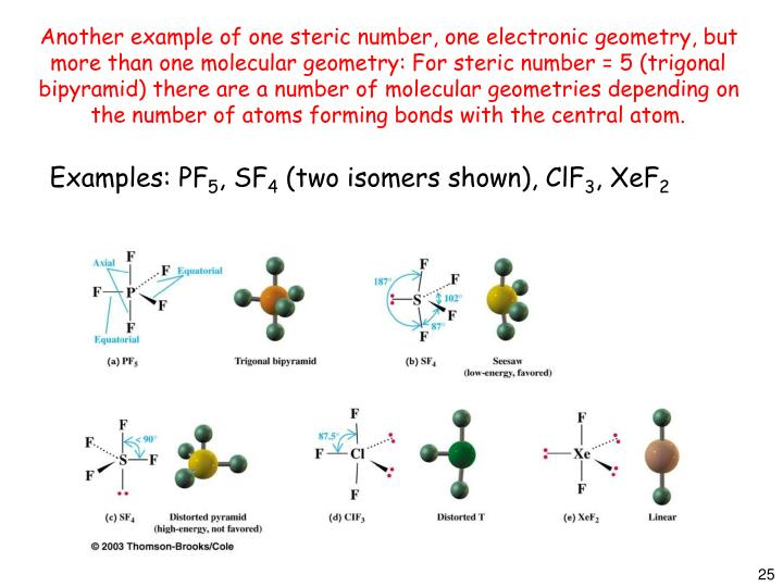Another example of one steric number, one electronic geometry, but more than one molecular geometry: For steric number = 5 (trigonal bipyramid) there are a number of molecular geometries depending on the number of atoms forming bonds with the central atom.