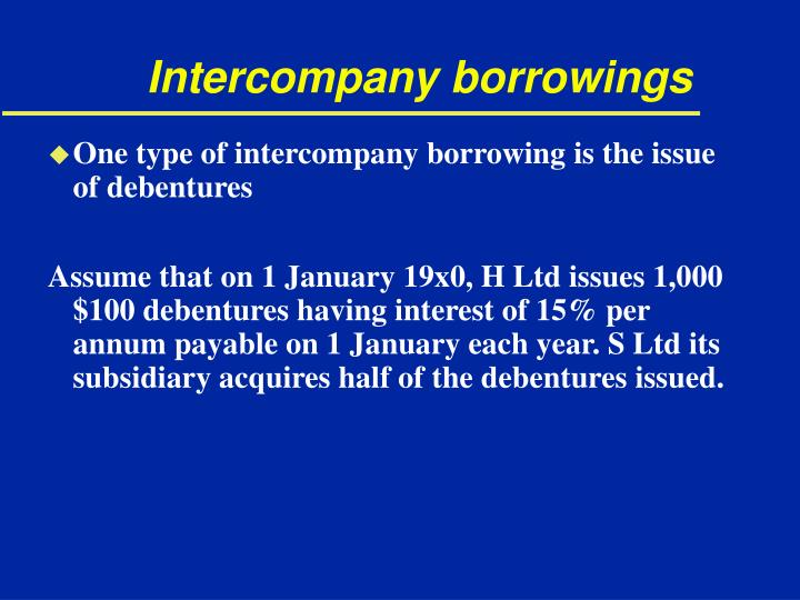 Intercompany borrowings