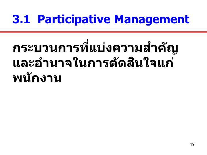 3.1  Participative Management