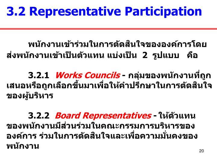 3.2 Representative Participation