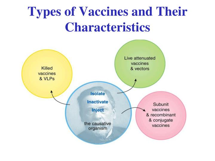 Types of Vaccines and Their Characteristics